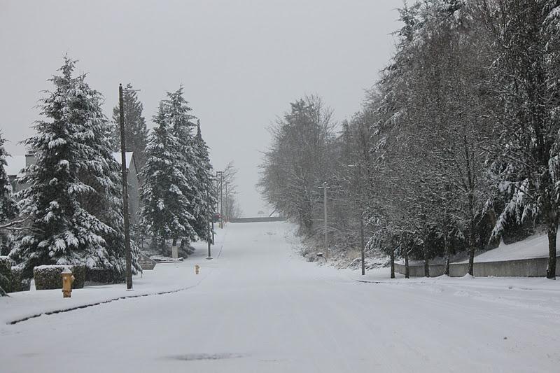 inverno em seattle