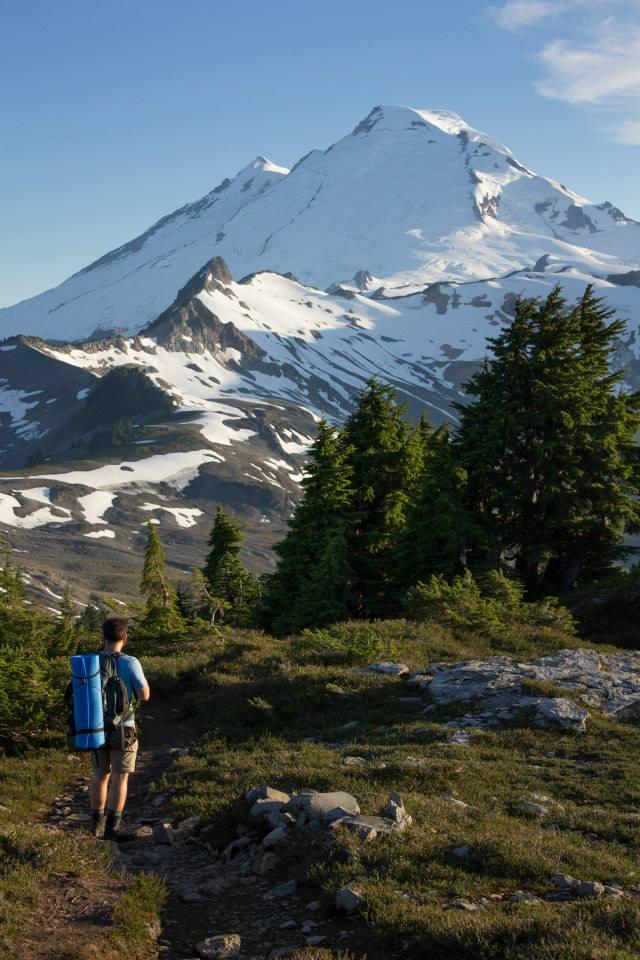 Gordo na trilha com o Mount Baker ao fundo.