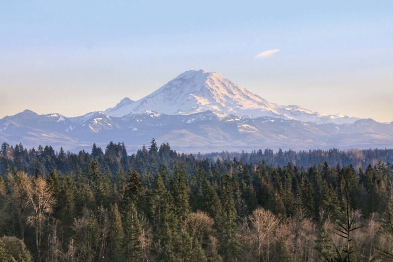 Mount Rainier Viewpoint - lugares para fotografar o Mount Rainier